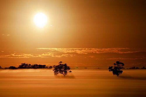 6 tatiara-morning-horsham-h550