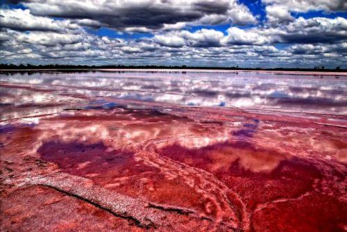9 pink-lake-1-h550